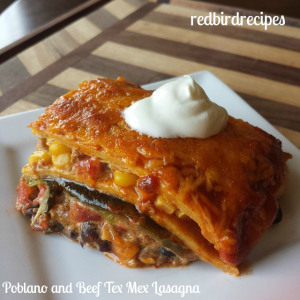 Poblano and Beef Tex Mex Lasgna